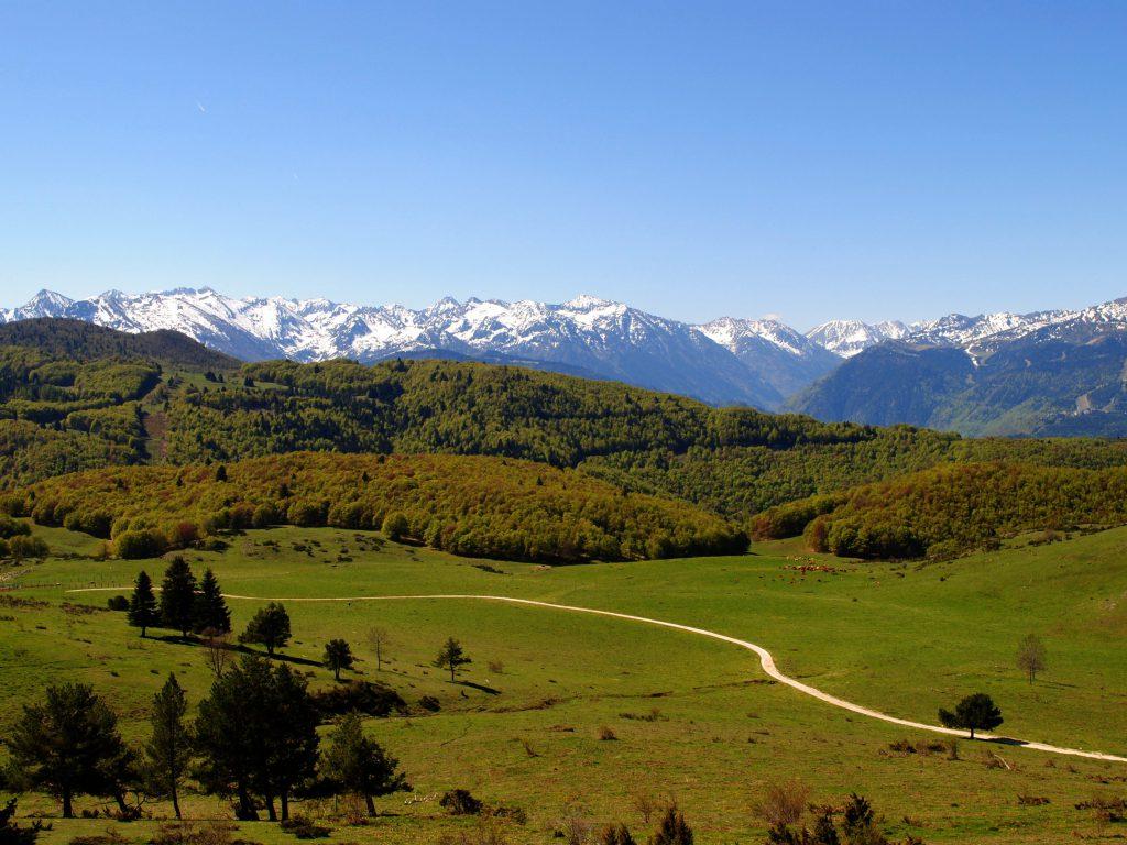 La chaîne des Pyrénées vu depuis le plateau de Sept-Cazes